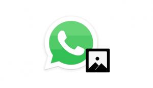 mengirimkan file gambar di Whatsapp tanpa kehilangan kualitas