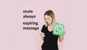Fitur Mute Always Whatsapp