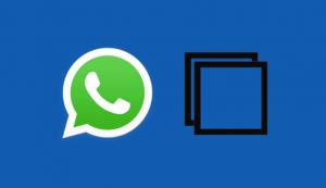 Kita bisa terapkan 5 Langkah copy paste pesan di Whatsapp